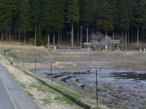 駐車場側から見た神社