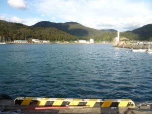菅浜漁港の様子