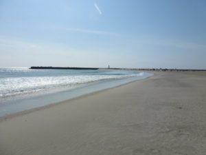 漁港の東側の海岸