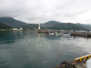菅浜漁港の様子(7時頃)