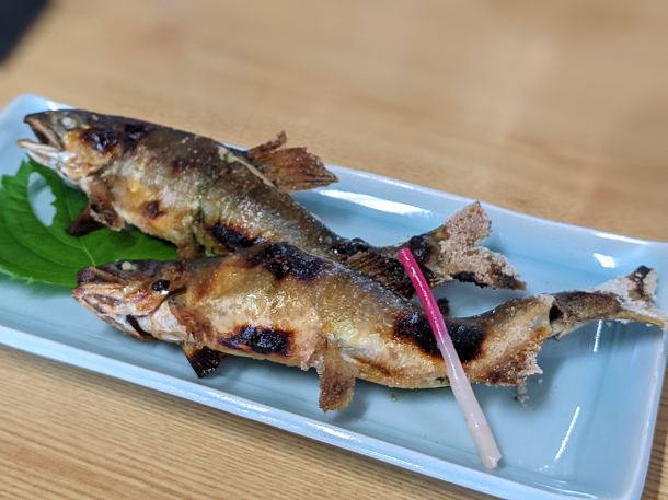 【川魚料理 魚勝】鮎の塩焼き