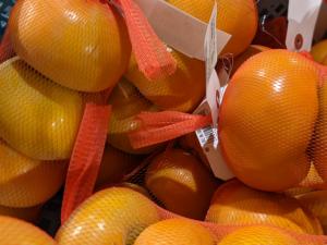 【月見の里南濃】富有柿